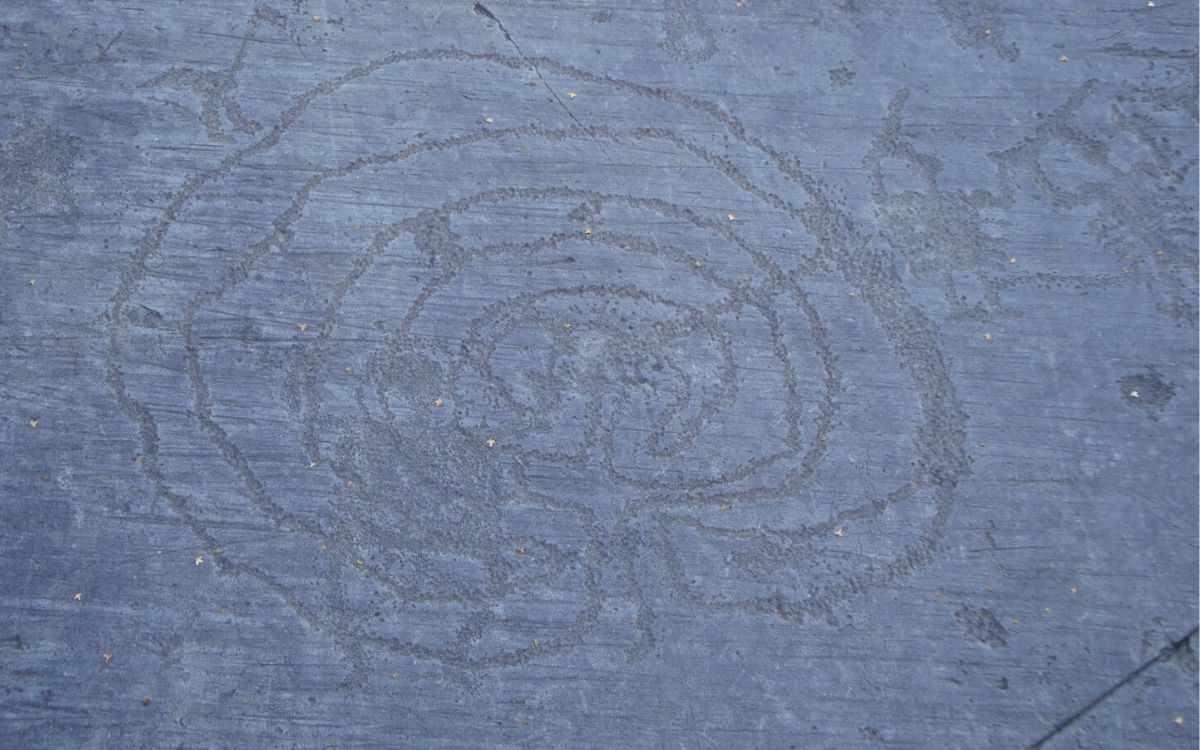 Incisioni rupestri Valle Camonica: il labirinto