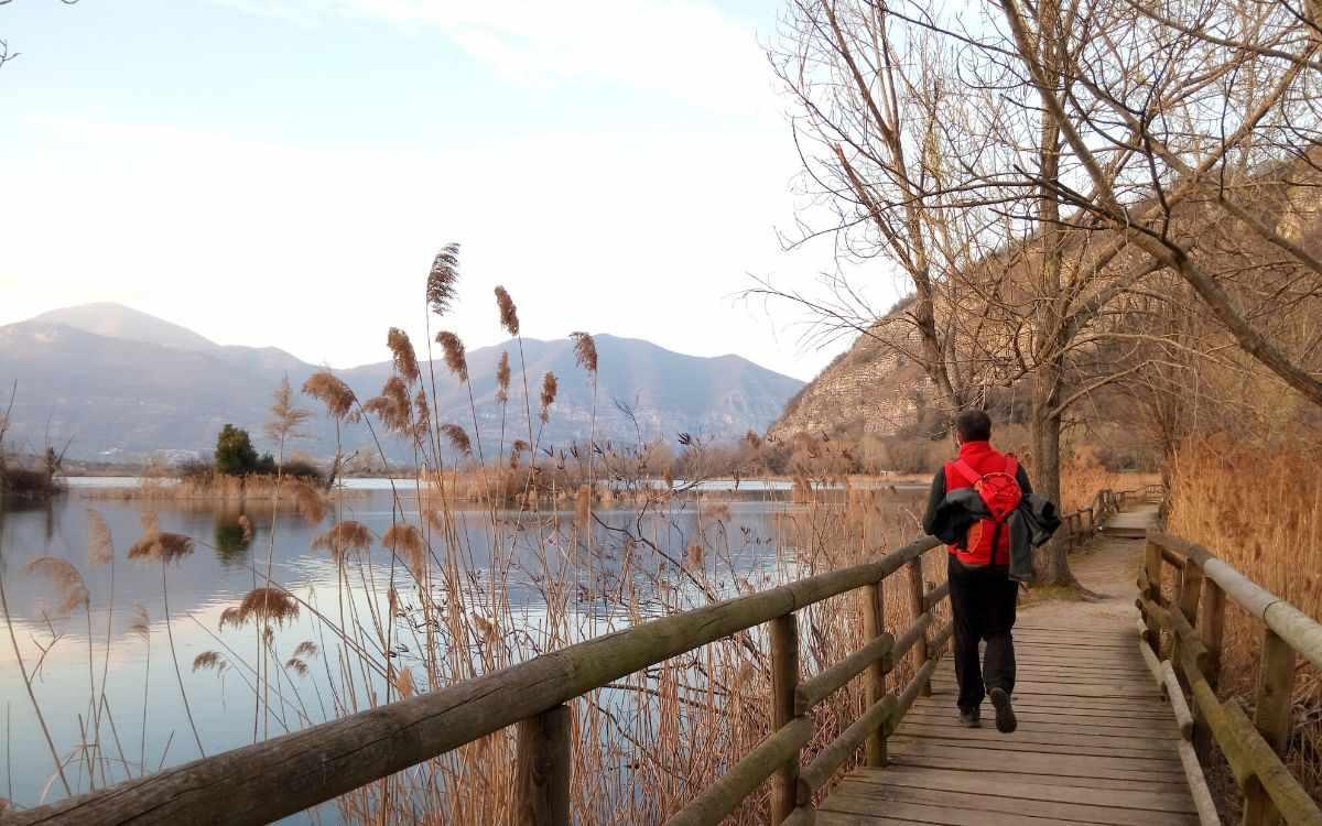 La riserva naturale delle torbiere