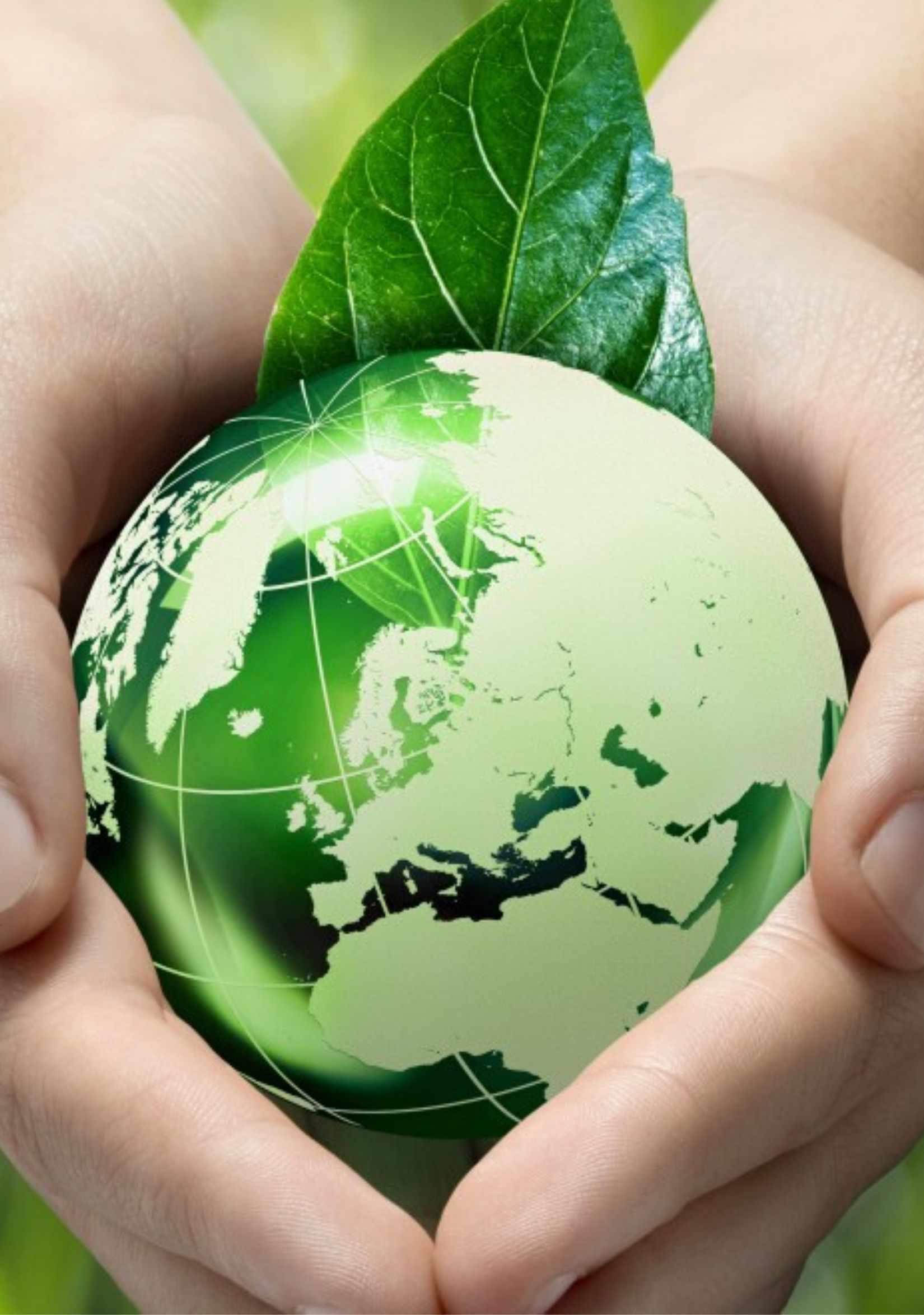 La tua vacanza a basso impatto ambientale