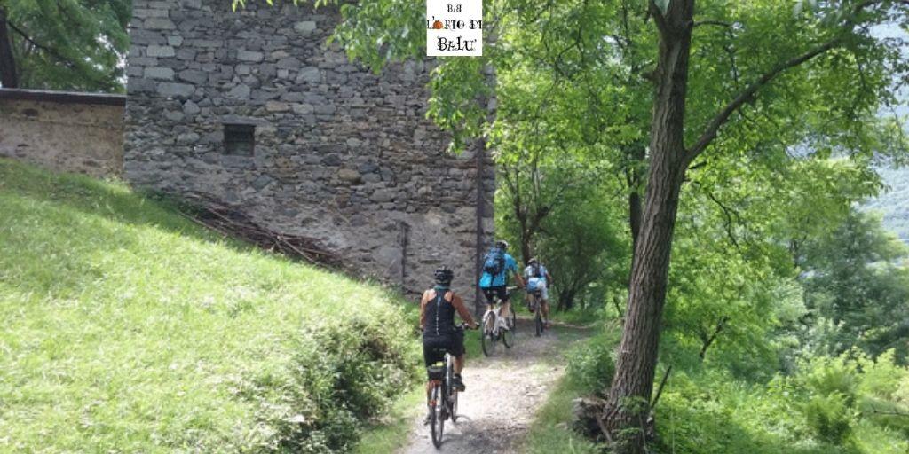 La ciclovia dell'Oglio tra i boschi della Valle Camonica